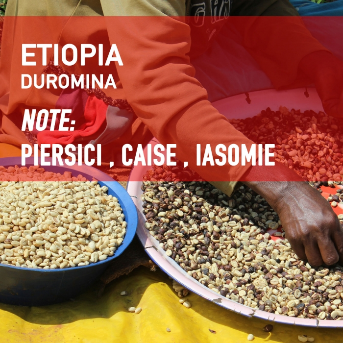 Ethiopia Duromina 0